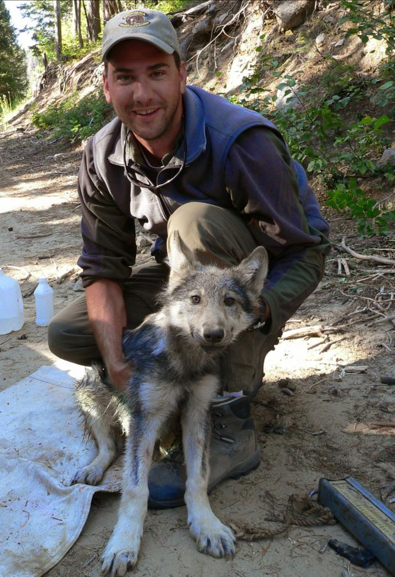 Ty With a Wolf Pup