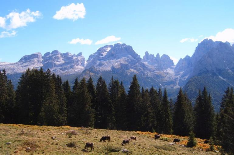 the Brenta Dolomites in Trentino, Italy