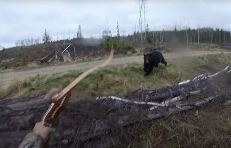 Black bear charges hunter