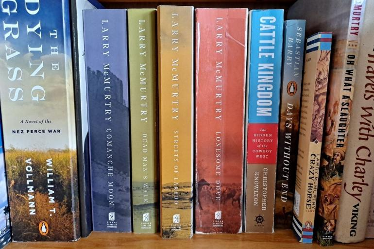 A cross-section of the author's bookshelf